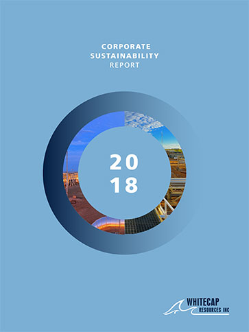 wcp-sustainability-report-2018.jpg